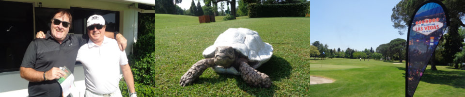 Tortugas 11-11