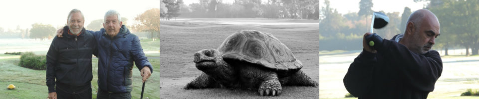 Tortugas 23-05