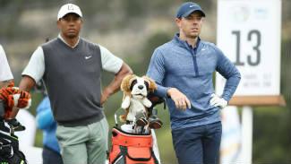 tiger rory golf chico